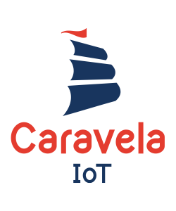 Brand development and logo design for Caravela IoT. Her & Himsel is named one of the best branding agencies in Milwaukee.
